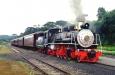 foto referênte a Trem Maria Fumaça com Expoflora Holambra